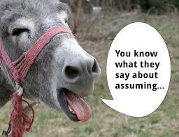 donkey assuming image