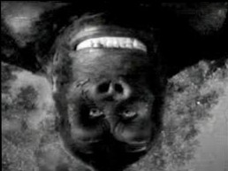 dreams King Kong head