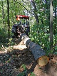 getting the log out