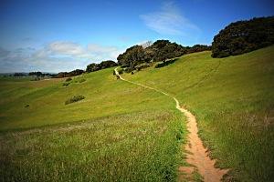 narrow-path-2